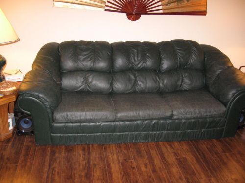 Picture of dark green vinyl couch