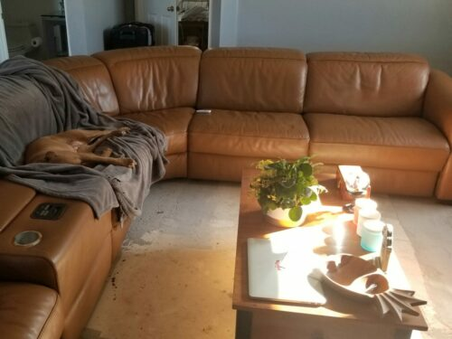 Picture of aniline leather sectional refinished with mix of RubnRestore colors