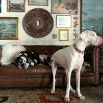 Walnut Vinyl & Leather Finish photo review