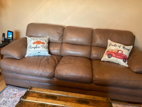 Light brown leather couch restored with Mocha Rub n Restore