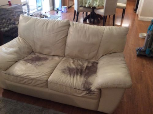 worn leather loveseat