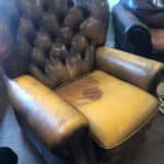 Photo of faded tufted leather chair