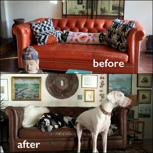 Before and after photo of an orange couch that has been changed to walnut color